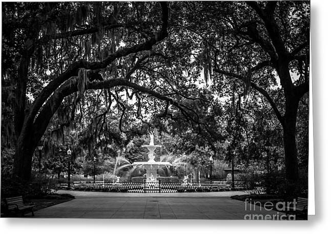 Fine Photography Digital Greeting Cards - Forsyth Park Greeting Card by Perry Webster