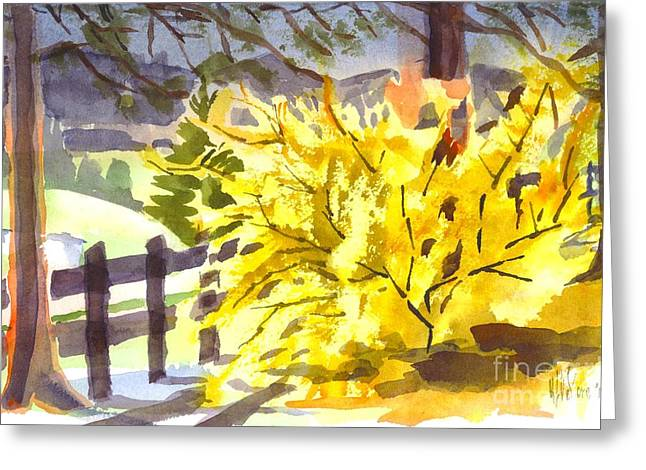 Forsythia Greeting Cards - Forsythia in Springtime Greeting Card by Kip DeVore