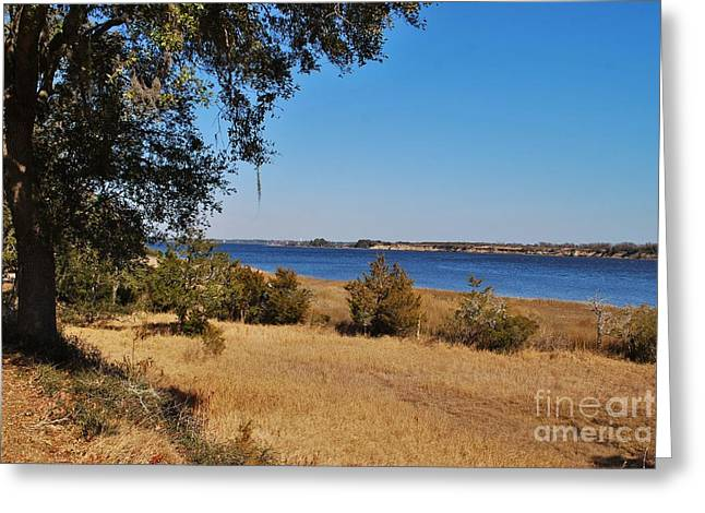 Confederate Hospital Greeting Cards - Fort Anderson Over Looking The Cape Fear River Greeting Card by Jocelyn Stephenson