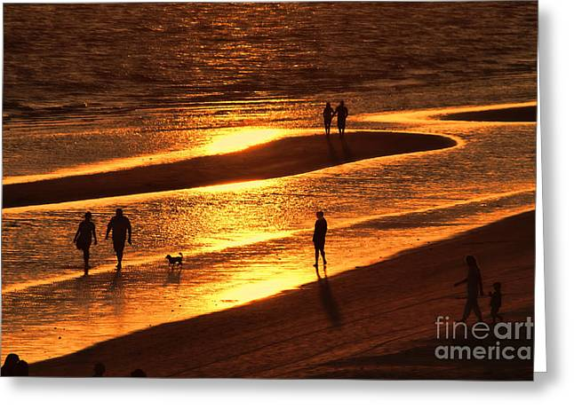 On The Beach Greeting Cards - Fort Myers Beach Sunset  Greeting Card by Olga Hamilton