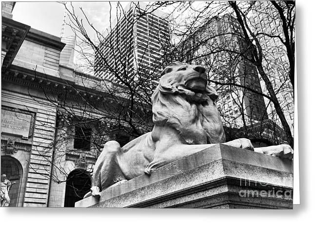 Fortitude Greeting Cards - Fortitude at the New York Public Library mono Greeting Card by John Rizzuto