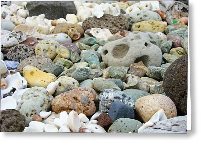 Fossil Art Greeting Cards - Fossil Rocks Garden Designs Coastal Art Prints Greeting Card by Baslee Troutman