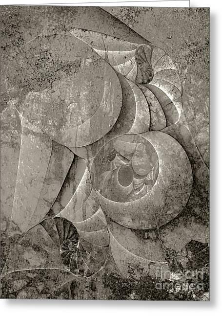 Fossilized Shell - B And W Greeting Card by Klara Acel