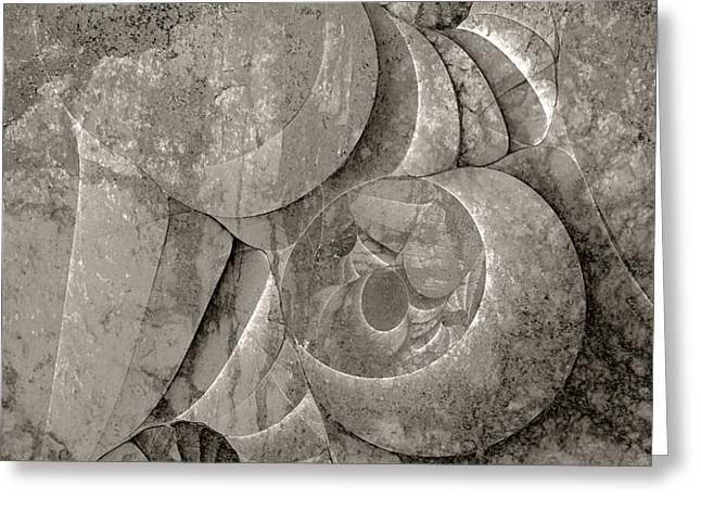 Fossilized Shell - B and W Greeting Card by Klara Acel