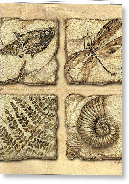 Stone Paintings Greeting Cards - Fossils Greeting Card by JQ Licensing