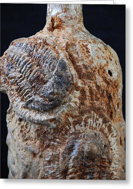 Wildlife Ceramics Greeting Cards - Fossils On Glass Bottle Greeting Card by Zoltan  Kapus