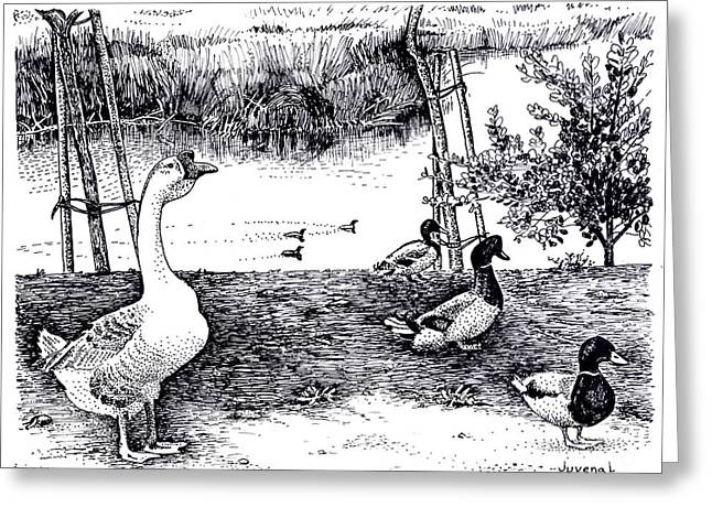Pointillist Drawings Greeting Cards - Foul at Paddon Lock Greeting Card by Joseph Juvenal