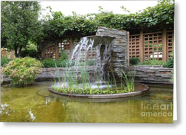 Sonoma County Greeting Cards - Fountain At The Historic Luther Burbank Home and Gardens Santa Rosa California 5D25912 Greeting Card by Wingsdomain Art and Photography