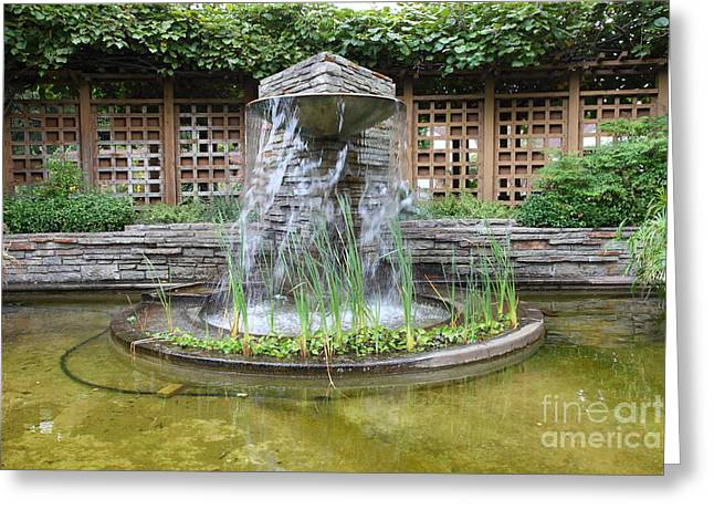 Sonoma County Greeting Cards - Fountain At The Historic Luther Burbank Home and Gardens Santa Rosa California 5D25913 Greeting Card by Wingsdomain Art and Photography