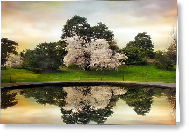 Pear Tree Greeting Cards - Fountain Reflections Greeting Card by Jessica Jenney