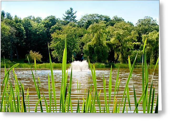 Concord Greeting Cards - Fountain Side Greeting Card by Greg Fortier