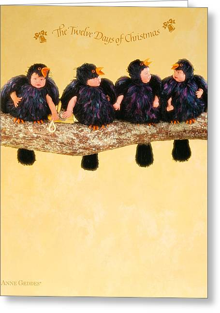 12 Days Of Christmas Greeting Cards - Four Calling Birds Greeting Card by Anne Geddes