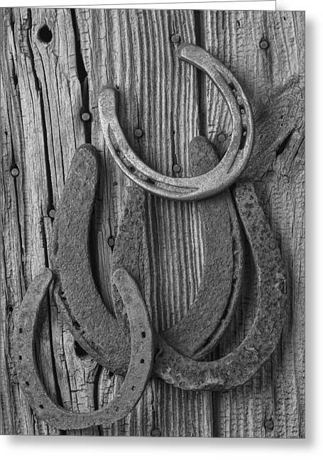 Four Horseshoes Greeting Card by Garry Gay