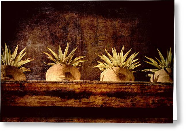 Potted Plants Greeting Cards - Four Potted Plants Greeting Card by Carol Leigh