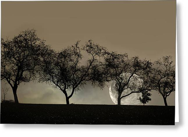 Surreal Moonrise Greeting Cards - Four Trees and a Moon Greeting Card by Ann Bridges