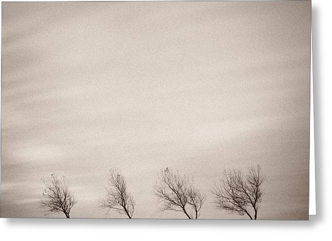 Mono Greeting Cards - Four Trees Greeting Card by Dave Bowman