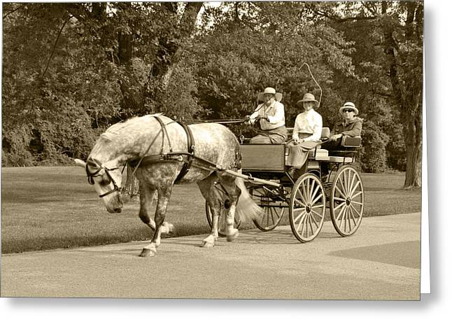 Horse And Cart Greeting Cards - Four wheel cart family Greeting Card by Wayne Sheeler
