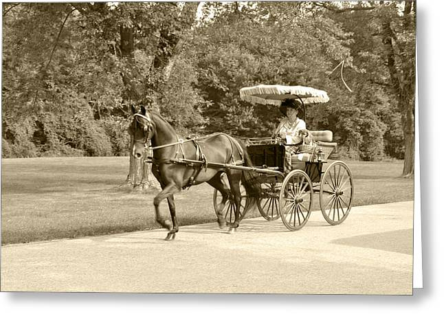 Four wheel cart with fringe Greeting Card by Wayne Sheeler