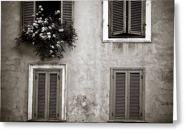 Shutter Greeting Cards - Four Windows Greeting Card by Dave Bowman