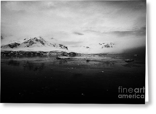 Fournier Greeting Cards - Fournier Bay on Anvers Island Antarctica Greeting Card by Joe Fox