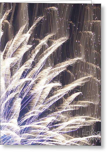 Reflections Of Infinity Greeting Cards - Fourth of July Fireworks Greeting Card by Robert E Alter Reflections of Infinity