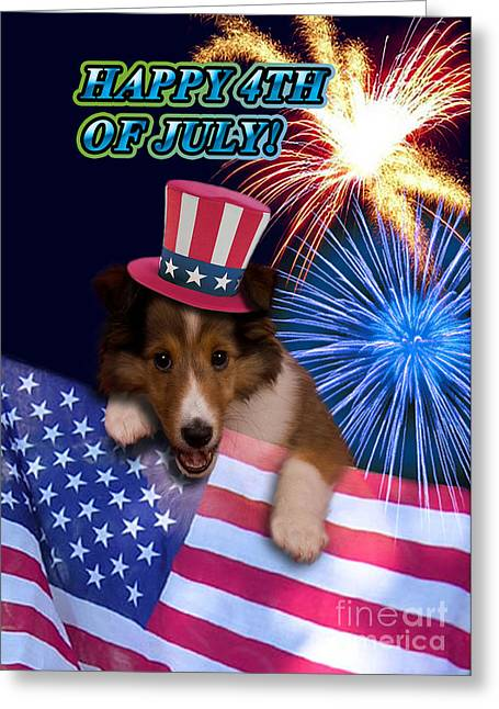 Wildlife Celebration Greeting Cards - Fourth of July Sheltie Puppy Greeting Card by Jeanette K