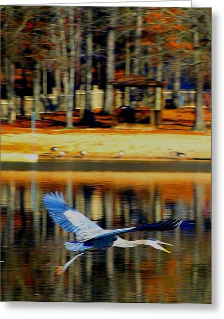 Cane Creek Greeting Cards - Fowl in Flight Greeting Card by Cindy Croal