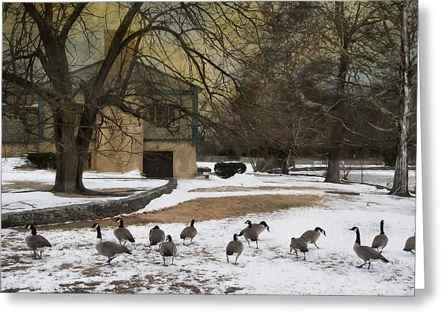 Fowl Weather Greeting Card by Robin-lee Vieira