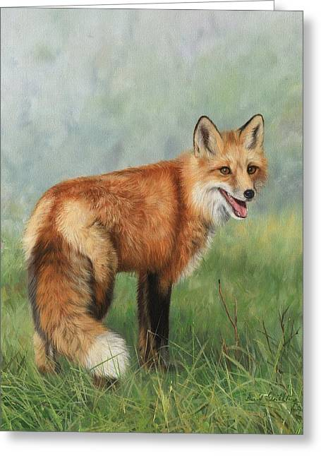 Red Foxes Greeting Cards - Fox  Greeting Card by David Stribbling