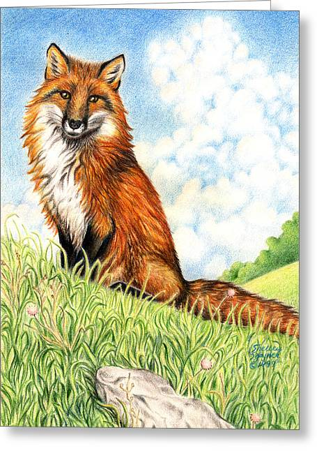 Field. Cloud Drawings Greeting Cards - Fox in the Meadow Greeting Card by Shelley Szajner