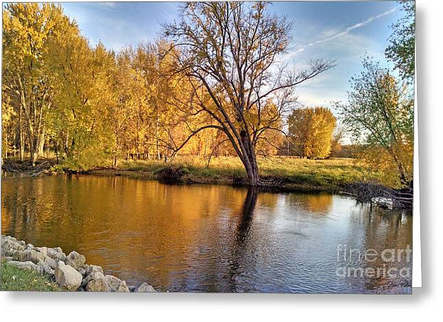 Willow Lake Greeting Cards - Fox River-JP2419 Greeting Card by Jean Plout