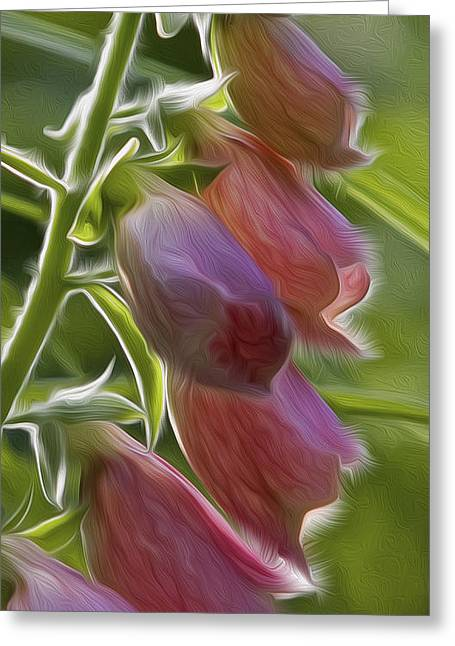 Foxglove Flowers Greeting Cards - Foxglove Greeting Card by Bill  Wakeley