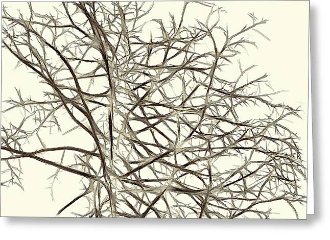 Fractal Ghost Tree - Inverted Greeting Card by Steve Ohlsen