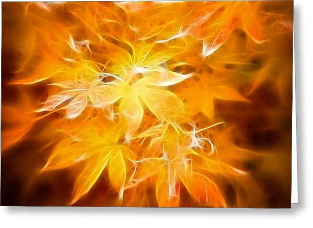 Fractal Gold 6664 Greeting Card by Timothy Bischoff