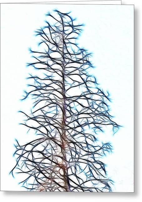 Bare Trees Mixed Media Greeting Cards - Fractal Tree Greeting Card by Steve Ohlsen