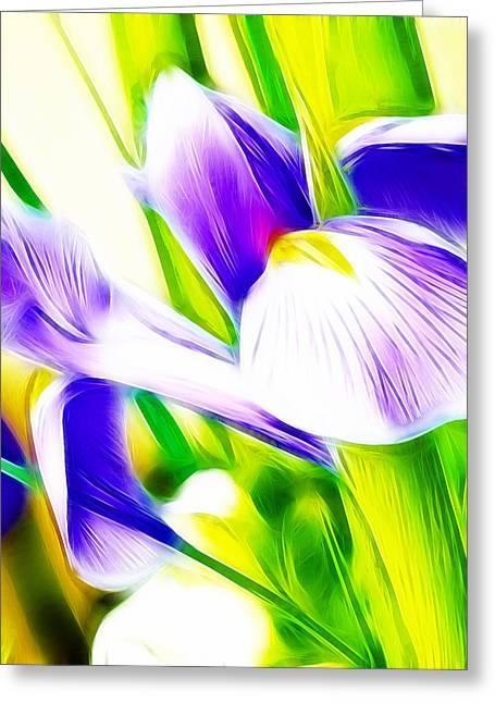 Iris Print Greeting Cards - Fractalius Iris Greeting Card by Sharon Lisa Clarke