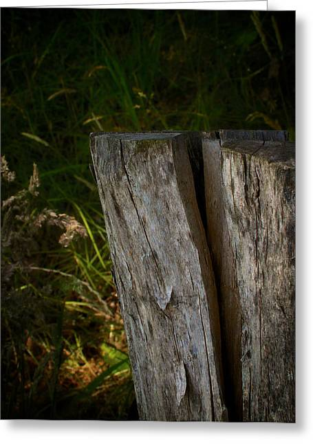 Old Fence Posts Greeting Cards - Fracture Greeting Card by Odd Jeppesen