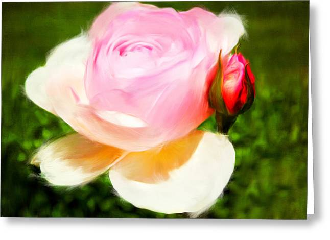 Rose Bushes Greeting Cards - Fragility Greeting Card by Lourry Legarde