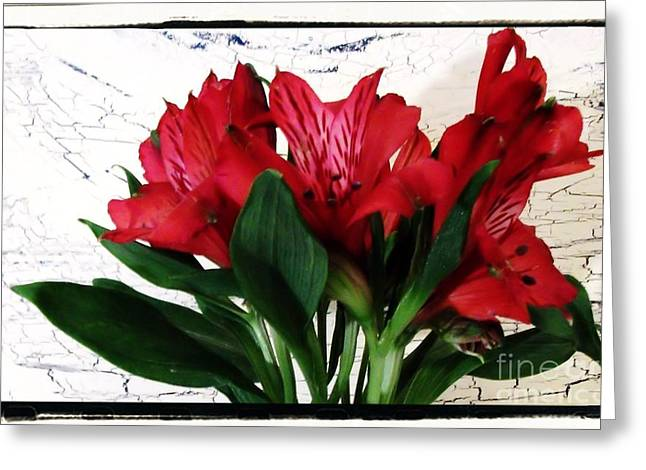 Flower Still Life Prints Greeting Cards - Framed Baby Tiger Red Flowers Greeting Card by Marsha Heiken