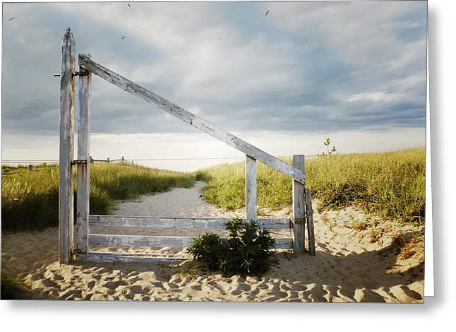 Nantucket Sound Greeting Cards - Framed Rustic Greeting Card by Natasha Marco