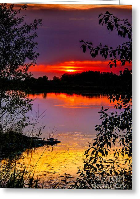Emmett Valley Greeting Cards - Framed Sunset Greeting Card by Robert Bales