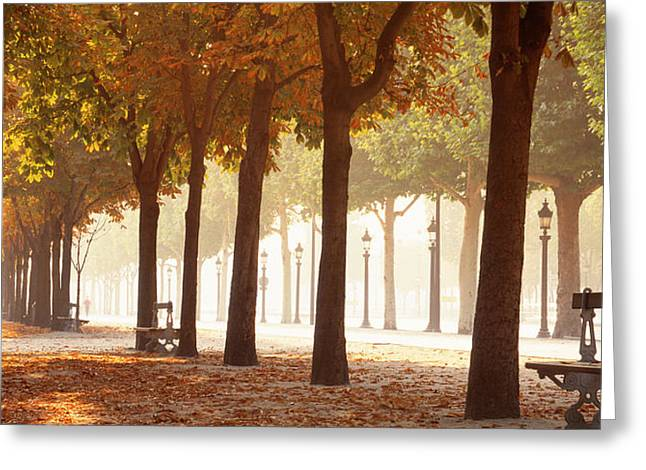 Shade Cover Greeting Cards - France, Paris, Champs Elysees Greeting Card by Panoramic Images