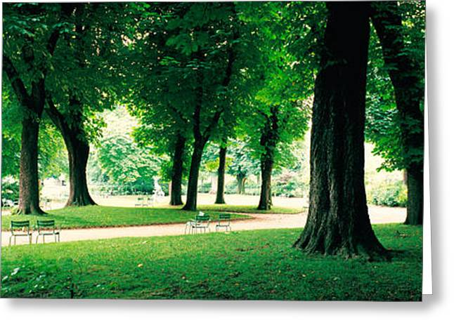 Luxembourg Greeting Cards - France, Paris, Jardin Du Luxembourg Greeting Card by Panoramic Images