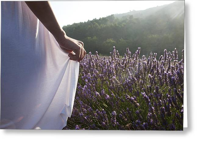 Rearview Greeting Cards - France, Provence. Woman In Lavender Greeting Card by Tips Images