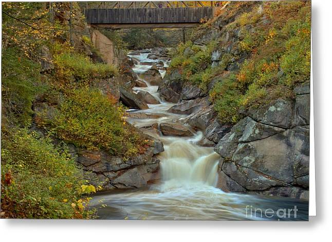 Covered Bridge Greeting Cards - Franconia Notch Liberty Gorge Greeting Card by Adam Jewell