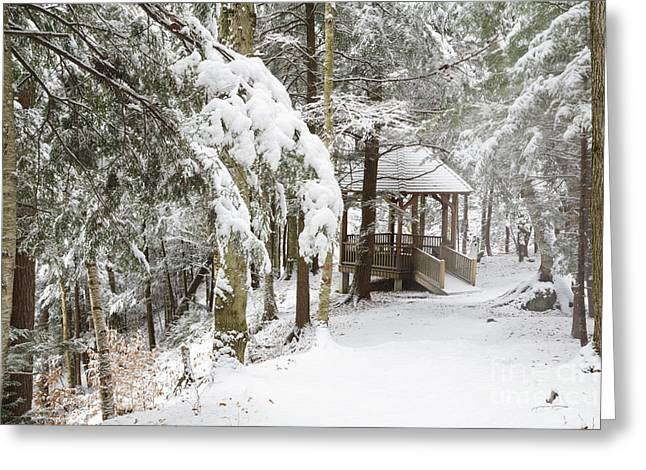 New England Snow Scene Greeting Cards - Franconia Notch State Park - White Mountains New Hampshire Greeting Card by Erin Paul Donovan