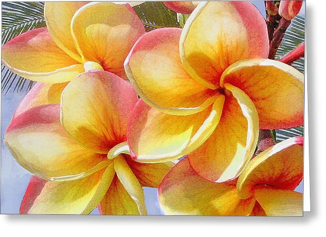 Frangipani Greeting Cards - Frangipani Pink and Yellow Greeting Card by Jane Schnetlage