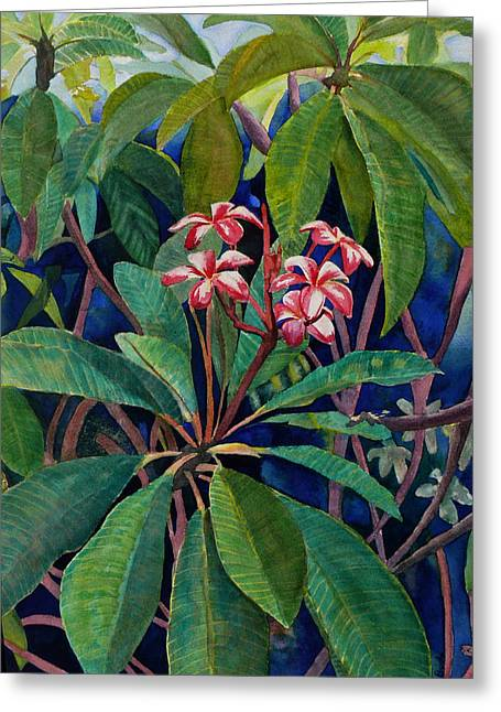 Pudica Greeting Cards - Frangipani Greeting Card by Susan Duda