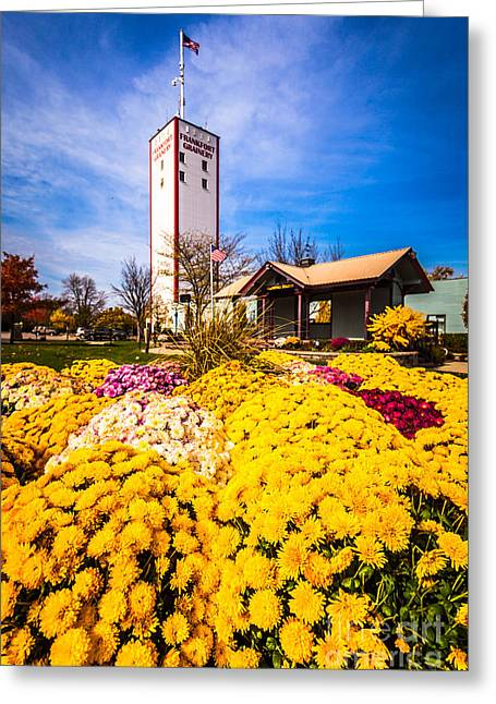 Frankfort Illinois And Frankort Grainery With Flowers Greeting Card by Paul Velgos
