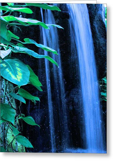 Hydration Greeting Cards - Franklin Park Waterfall Greeting Card by Dan Sproul
